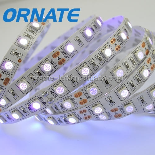 Perfect waterproof 5050 led rope light IP68,led light swimming pool rope light