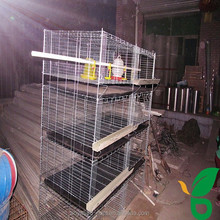 high survival rate baby chick hen brooder cage