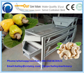 Big machine line raw cashew nut processing machine 200-400kg/h