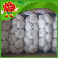 without pesticide Fresh Chinese Garlic white cheap garlic on sale