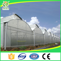 Low Cost Tomato Agricultural Plastic Film