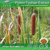 Free sample Bletilla rubber extract/Typha angustifolia extract/Cattail pollen extract Plant extract