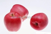 2016 New Crop Chinese fresh delicious red star apple best price fruit exporter