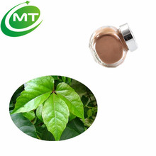 100% Natural Powder Ivy Leaf Extract