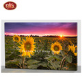 Beautiful Sunflower With LED Light Printed Canvas Wall Decor