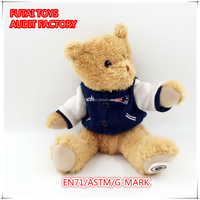 OEM welcome plush toys various design teddy bear crafts working teddy bear/teddy bear puppy