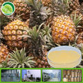 High Quality of organic pineapple powder