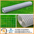25M X 1M Welded Wire Mesh Galvanized Fence Panel Chicken Hen House Hutch Pet Run