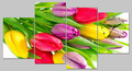 Tulip blooming flower wall clock sangtai clock movement