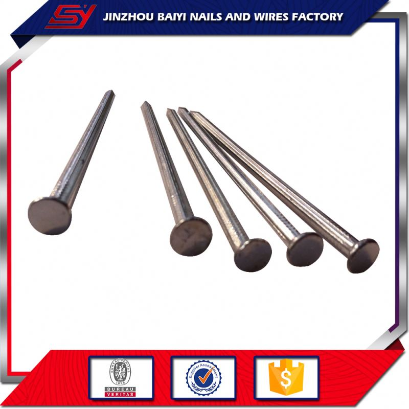 new products Q195 /Q235 plastic head stainless steel nail 16mm