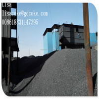 Electrically Calcined Anthracite Coal/Calcined Anthracite