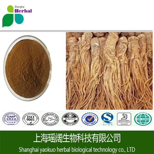 Hot Selling Angelica Sinensis Extract(Dong Kuai extract) (CAS #: 4431-01-0 )