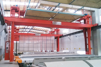 double girder aluminium coloring bridge crane