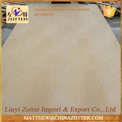 Best Manufacturers In China Two Times Hot Press Film Faced Plywood