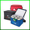 Good quality top sell wholesale eco non woven beer cooler bag