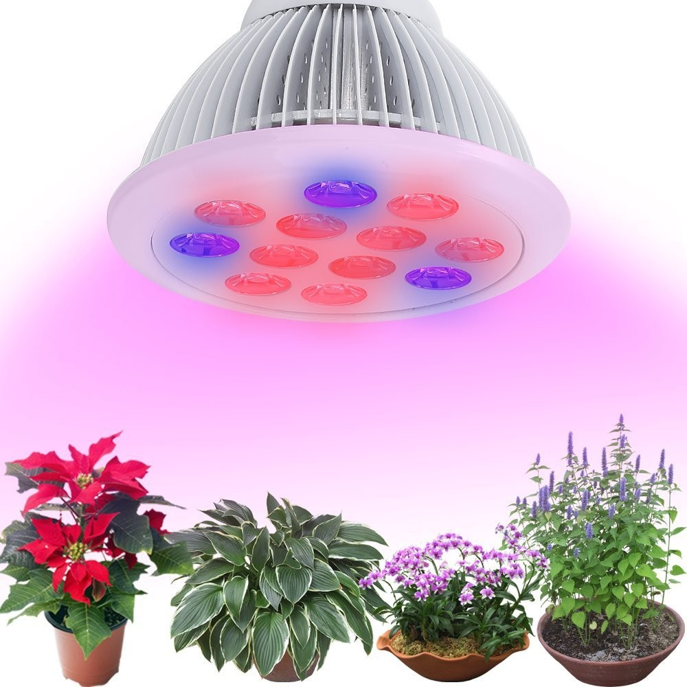New Design IP44 CE UL PAR38 36W Greenhouse Led Grow Light bulb with 60 degree full spectrum 2years