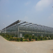 Large Multi-Span Glass Greenhouse Project as ecological agriculture for organic food production