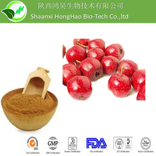 Competitive Price and Best Service Hawthorn Berry Extract Powder Form