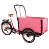 Luxury Transportation 250 watt motorcycles cargo bike for kids