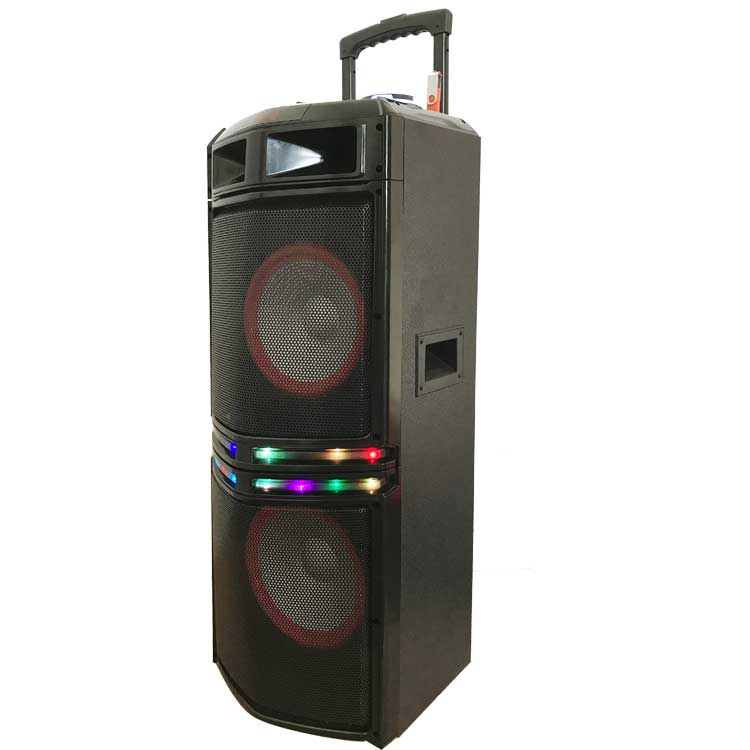 Dual 10 inch wholesale high end Christmas gift sound speaker