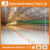 Alibaba Heracles design Complete poultry chicken farm equipment for broiler and breeders