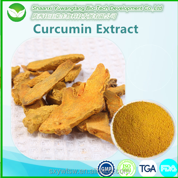 Free Sample organic curcumin powder turmeric root extract