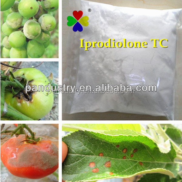 Fungicide Iprodione/Rovral 96%TC Fungicide Iprodione36734-19-7