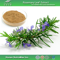 100% Natural Rosemary Leaf Extract with Free Samples