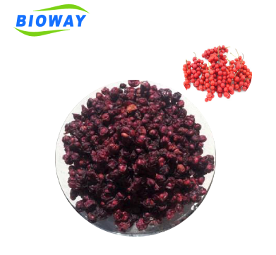 Factory supply Organic Schizandra chinensis Fruit