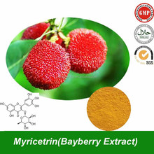 Natural Myricetrin Powder (CAS No.17912-87-7 ) Bayberry Extract