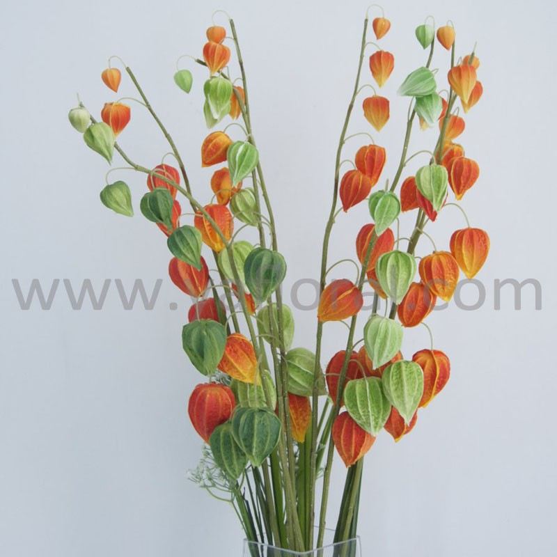 Wholesale artificial flower PU real touch cape gooseberry indian gooseberry for wedding decoration