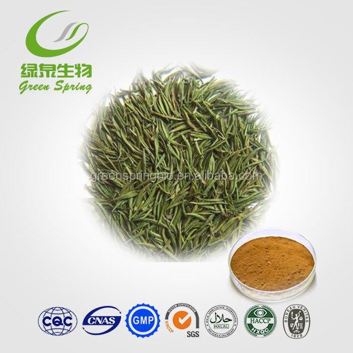 High quality green tea extract powder,green tea extract bulk/black tea extract