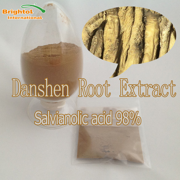 High quality Danshen Root powder extract