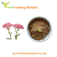 High Quality Yarrow Flower Extract