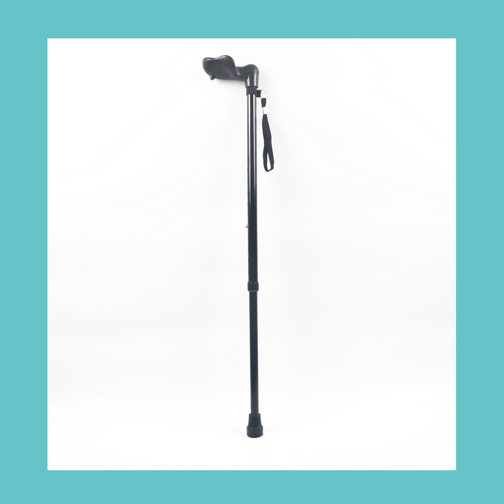 Walking Stick Aids bamboo cane