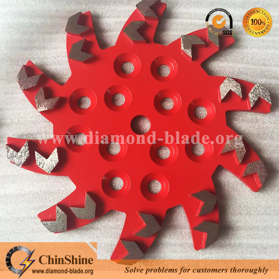 Floor diamond grinding head, plate and diamond grinding wheel for concrete for blastrac