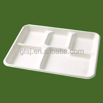 Biodegradable food container with 5 comparts