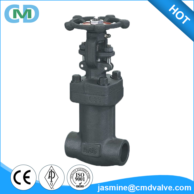 Manual A105 Forged Steel Soket welded Bellow sealed Globe Valve for High temperature