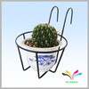 Home Garden Use Wall Hanging Pot