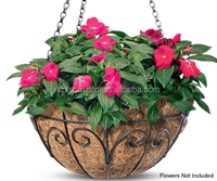 pre planted hanging baskets uk