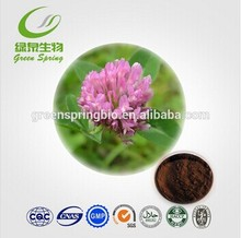 Red clover extract powder!herb extract!biotech skin care products!