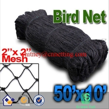 "New Anti Bird Netting 50'X10' Soccer Baseball Game Poultry fish Net 2""x2"" Mesh"