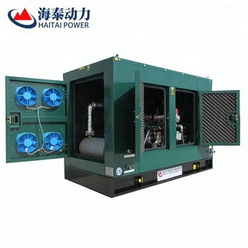 Lofe-Long Free Service Water Cooled 20kw biogas generator set