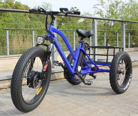 Hot selling powerful 48V 500W fat tire electric trike/tricycle with top quality