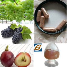 Big Sell 100% Natural Proanthocyanidins Organic Skin Vitamin of Grape Seed Extract