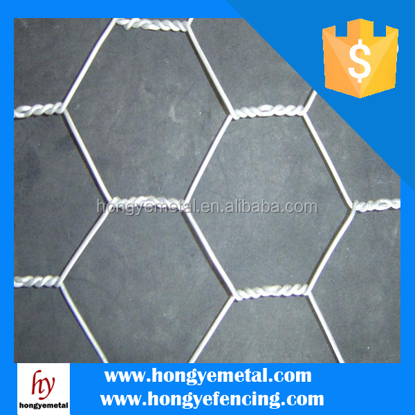 China Manufacturer Soccer Hexagonal /Chicken Wire Mesh
