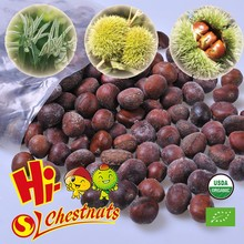 Frozen Roasted Chestnuts in Shell for sale