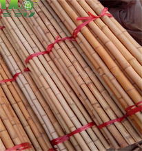 WY T-001 201 Natural yellow raw tonkin bamboo poles for large supply manufactures china
