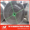 Subzero cold proof moulded conveyor belt, moulded cold resistant belt manufacturer