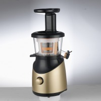 mini electric vegetable and fruit juicer